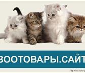 Изображение в Домашние животные Товары для животных Интернет магазин товаров для животных Зоотовары.сайт в Москве 0