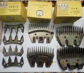 Изображение в Домашние животные Товары для животных Продам ножи и гребенки к машинки для стрижки в Орске 180