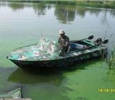 Фотография в Хобби и увлечения Рыбалка Продам лодку ОБЬ (первая модель)в хорошем в Балаково 50