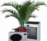 Фотография в Электроника и техника Плиты, духовки, панели Ремонт микроволновых СВЧ печей,  электроплит, в Нижнем Новгороде 0