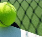 """Foto в Спорт Спортивные школы и секции Теннисный цент """"TennisStar"""" приглашает детей в Ставрополе 2200"""