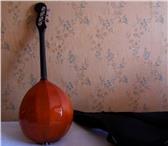 Фото в Хобби и увлечения Музыка, пение Дерево грифа: букНакладка грифа: букПанцирь: в Омске 8200