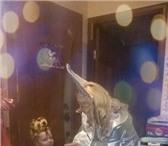 Foto в Развлечения и досуг Организация праздников Приближается Новый Год-любимый праздник детей в Омске 1000