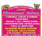 """Foto в Домашние животные Услуги для животных Зоо салон-магазин """"Хвостатый модник"""" предлагает в Наро-Фоминск 0"""