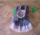 Foto в Домашние животные Одежда для собак У нас предоставлена одежда для собак разных в Хабаровске 200