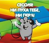 Фотография в Образование Курсовые, дипломные работы Совсем не осталось времени на написание реферата? в Омске 500