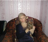 Фото в Для детей Услуги няни Опытная Няня поможет в воспитании Вашего в Санкт-Петербурге 170
