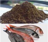 Изображение в Домашние животные Корм для животных Продам рыбную муку пр-во Россия. Содержание в Москве 80