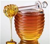Изображение в Домашние животные Разное Продам липовый мёд.Вкусный,не разбавленный.Пасека в Стерлитамаке 1600