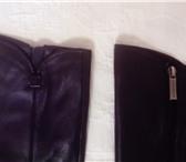 Изображение в Одежда и обувь Женская обувь Продам натуральные кожаные сапоги-демисезонные, в Новосибирске 6000
