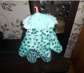 Фото в Домашние животные Одежда для собак теплый комбинезон для не большой собачки в Красноярске 700