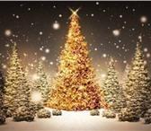 Foto в Отдых и путешествия Санатории Если традиционная схема встречи Нового года в Казани 6850