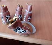 Изображение в Домашние животные Товары для животных Новые ботиночки для собак мелких пород.И в Красноярске 500