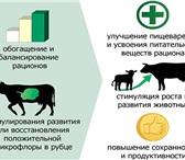 Фотография в Домашние животные Корм для животных Продается С.У.П. – Углеводный пребиотический в Москве 15