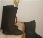 Изображение в Одежда и обувь Мужская обувь Предлагаю валенки-самовалки черного, серого в Чите 600