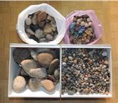 Foto в Домашние животные Товары для животных Камни речные, разных размеров, цвета и формы в Якутске 500