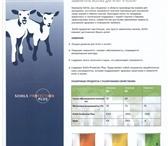 Изображение в Домашние животные Корм для животных ООО «Гринвэй» предлагает Вам продукты компании в Санкт-Петербурге 130