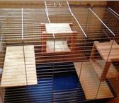 Фото в Домашние животные Грызуны Размеры 53x98x80Клетка в хорошем состоянии.Съемные в Санкт-Петербурге 2700
