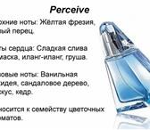 Фотография в Красота и здоровье Парфюмерия Perceive - парфюмерная вода (50 мл); Perceive в Сочи 700
