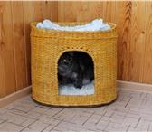 Фотография в Домашние животные Товары для животных Сплету на заказ недорого домики и лежанки в Улан-Удэ 400