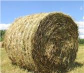 Фото в Домашние животные Корм для животных Продается сено в рулонах, урожай 2015 года, в Челябинске 800