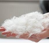 Foto в Прочее,  разное Разное Компания Пух Текстиль Юг - перо - пуховая в Ростове-на-Дону 150