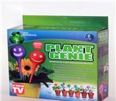 Фото в Домашние животные Растения Plant Genie - это новое решение для полива в Рязани 400